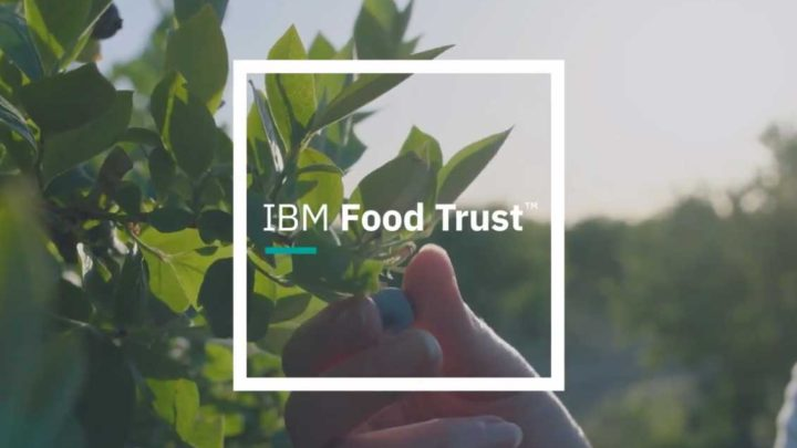 IBM Food Trust commercial blockchain launch links food safety from farm to dinner table