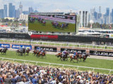 2018 Melbourne Cup field