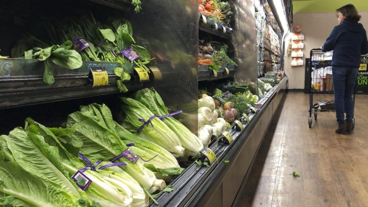 E. coli outbreaks point to lagging implementation of landmark law