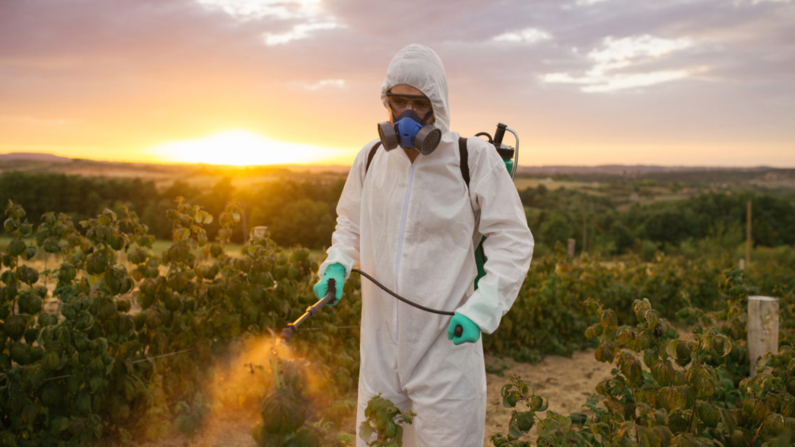 Can Eating Organic Lower Your Exposure to Pesticides?