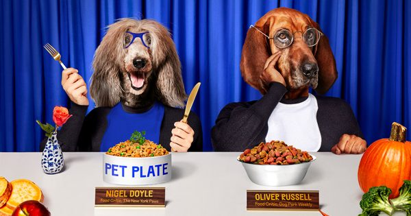 How Direct-to-Consumer Brands Are Plotting Their Way to Your Dog's Heart – Adweek