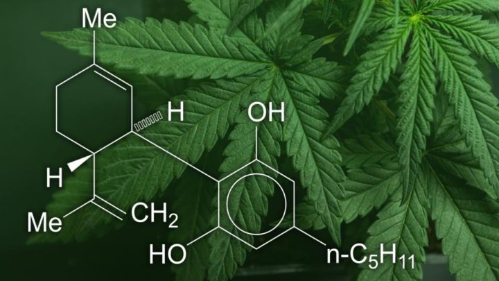 Consumer Update: FDA seeks answers about CBD