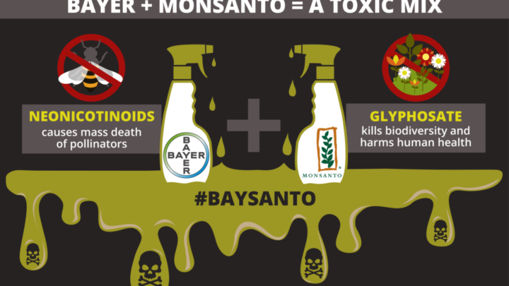 Bayer Shareholders: Put Health and Nature First and Stop Funding This Company!