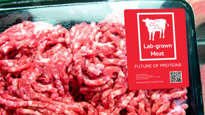 Meat and Meat Alternatives Regulation