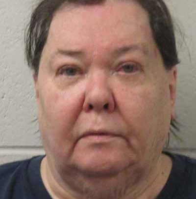 Roseville woman ordered to pay $223K in restitution | News, Sports, Jobs